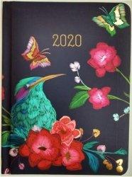 KALENDARZ 2020 GLAMOUR B6 ZIMORODEK TNS 35963