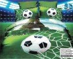 Pościel 3D Piłka Nożna Stadion 160x200. 100% Mikrowłókno Ruibang wz. PN 11