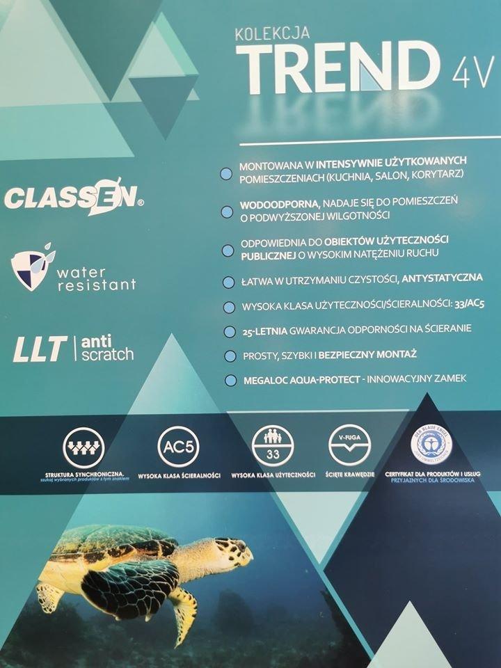 CLASSEN - TREND 4 V / Dąb Gołdap 8mm AC5 V4  52600