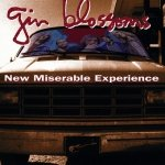 Gin Blossoms - New Miserable Experience (CD)