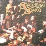 Steeleye Span - Below The Salt (LP)