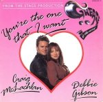Craig McLachlan & Debbie Gibson - You're The One That I Want (7)