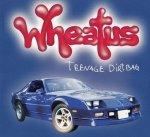 Wheatus - Teenage Dirtbag (Maxi-CD)