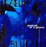 Bluezeum - Portrait Of A Groove (CD)