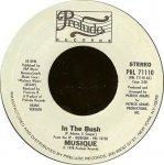 Musique - In The Bush (7)
