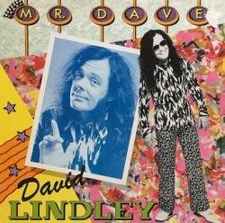 David Lindley - Mr. Dave (LP)