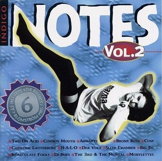Indigo Notes Vol. 2 (CD)