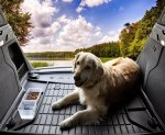 Mata do bagażnika – idealny dodatek dla właścicieli psów