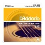 D'Addario EJ19 - Phosphor Bronze 12-56