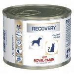 ROYAL CANIN Recovery 195 g (puszka)