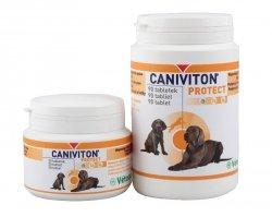 Vetoquinol Caniviton Protect 90 tabl.