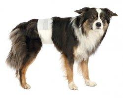 Trixie pampas dla psa M-L 12szt. TX-23642