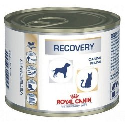 ROYAL CANIN Recovery 195 g (puszka)