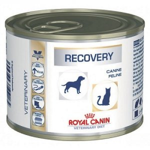 ROYAL CANIN Recovery 195g (puszka)