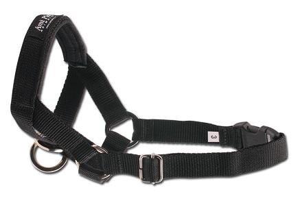 AMI PLAY Halter N1 Yorkshire Terrier czarny