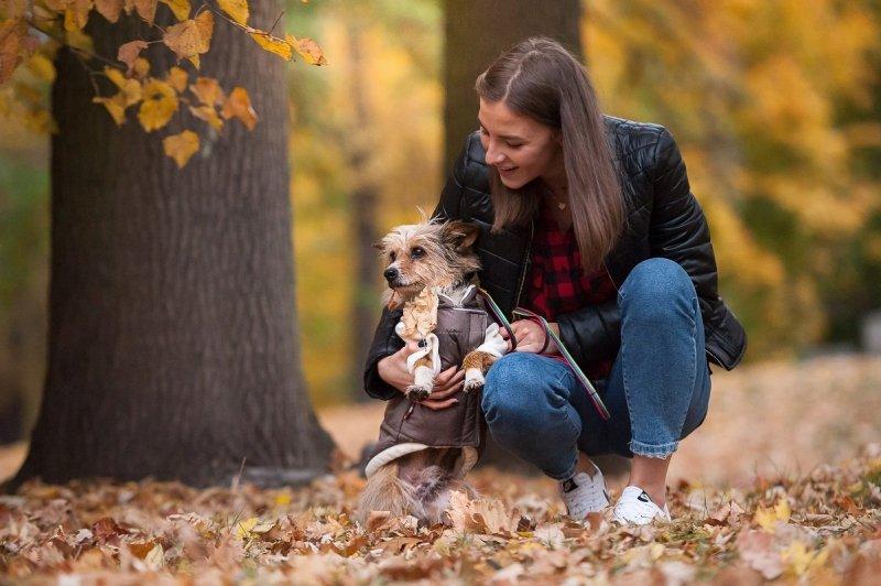 ANIMAL DESIGN Kurtka dla psa Czerwono-Czarna 50cm