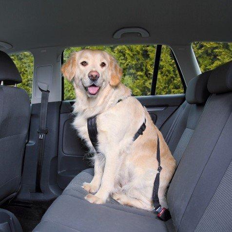 Trixie Szelki samochodowe dla psa M