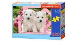 Puzzle White Terrier Puppies 120