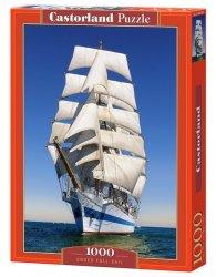 Puzzle Under Full Sail 1000