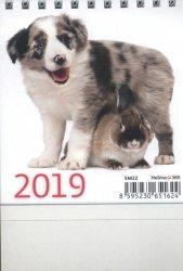 Kalendarz 2019 biurkowy mini przyjaciele