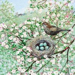 Karnet kwadrat z kopertą Blossom and Blackbird
