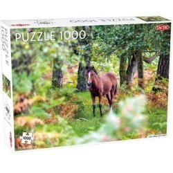 Puzzle Wild Horses, New Forest 1000