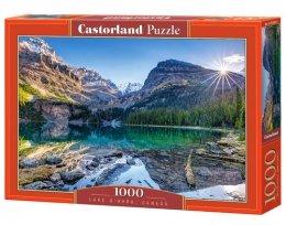 Puzzle Lake OHara, Canada 1000