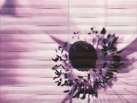 Maxima Violet 2 Obraz 6 elementowy 89,8x67,3