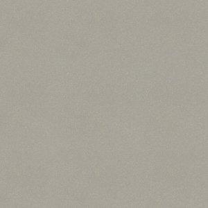 Moondust Light Grey Polished 59,4x59,4