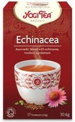 A565 Echinacea ECHINACEA