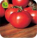 Pomidor szczepiony Fantasio