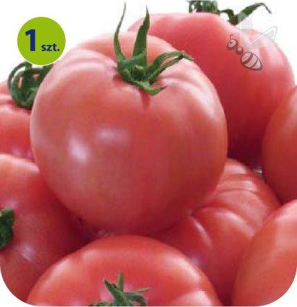 Pomidor szczepiony Tomimaru Muchoo