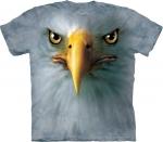 Eagle Face -  The Mountain