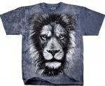 Lion Glare - Liquid Blue