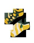 The lemons - Krátké Ponožky - Many Mornings