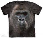 Big Face Lowland Gorilla - The Mountain