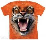 Roaring Tiger Face - The Mountain