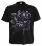 Rose Angels - Spiral