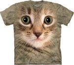Kitten Face -  The Mountain