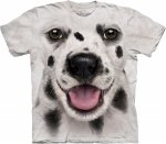 Big Face Dalmation Puppy - The Mountain