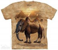 Camelephant - Wielbłądosłoń - The Mountain