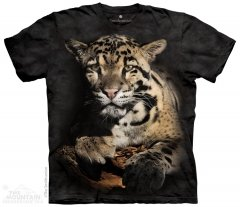 Clouded Leopard - The Mountain