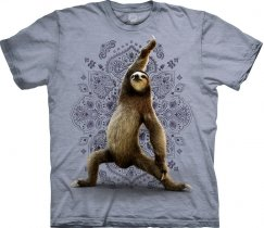 Warrior Sloth Yoga - The Mountain