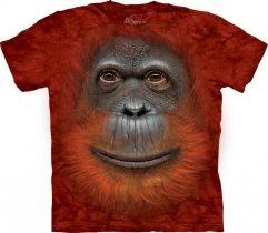 Orangutan Face - The Mountain OUTLET