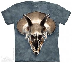 Triceratops Skull - The Mountain