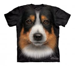 Australian Shepherd - The Mountain - Junior