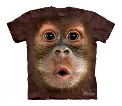 Big Face Baby Orangutan Junior - The Mountain