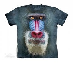 Big Face Mandrill Baboon - Małpa - The Mountain - Junior