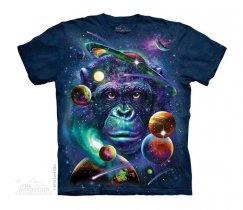 Cosmic Chimp -Junior The Mountain