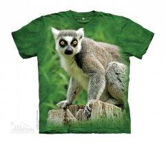 Ring Tailed Lemur - The Mountain - Junior